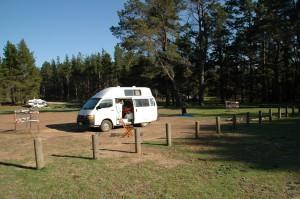 Belango State Forrest