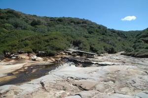 Blick vom Fels zurück in die Buschvegetation