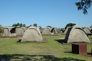 Gemütlich im Zelt auf Cockatoo Island übernachten