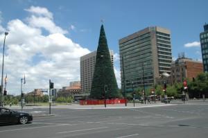 Großer Weihnachtsbaum im Stadtzentrum