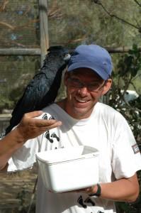 Frank hat 'nen Vogel: Rotschwanz-Rabenkakadu