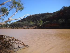 Murchison River: nach Regenfällen im Norden mit viel Wasser