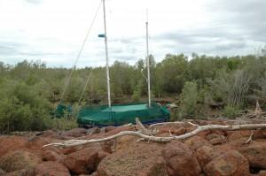 Boot auf dem Trockenen zwischen den Mangroven