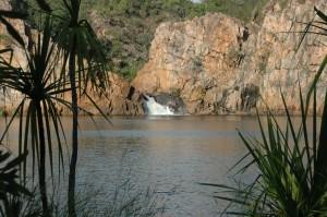 Edith Falls - See mit Krokodilen