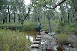 Wanderung im Nationalpark