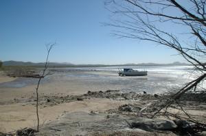 Boot zu verkaufen in Keppel Sands