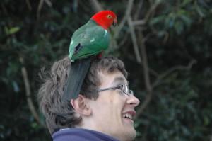 Lamington Nationalpark: Dorian hat einen Vogel